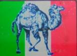 美国骆驼皮具行